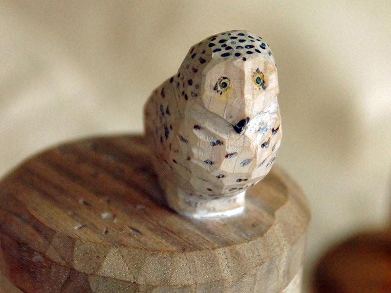 Detain, shrinkbox with Snowy owl