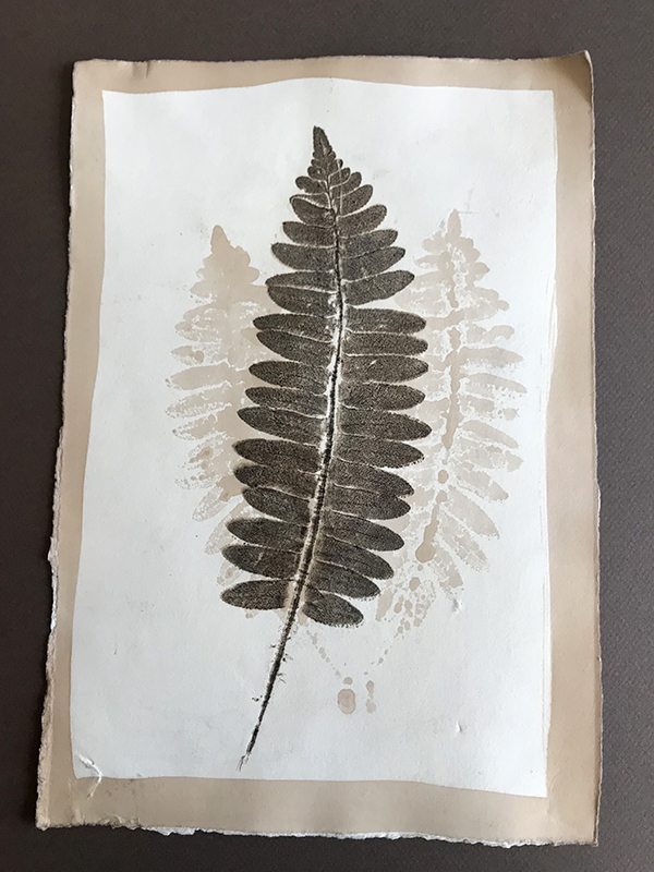 fern print, direct on heavy hand-dyed paper.